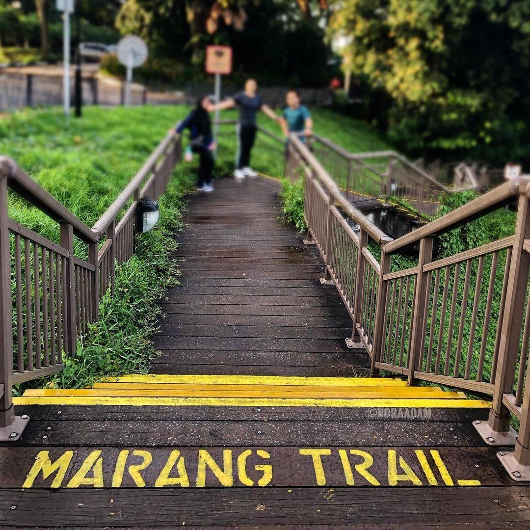 Marang Trail Southern Ridges Singapore