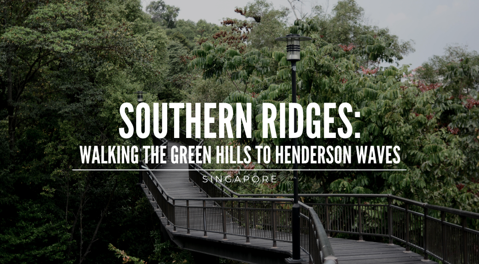 Southern Ridges: Walking the Green Hills to the Henderson Waves