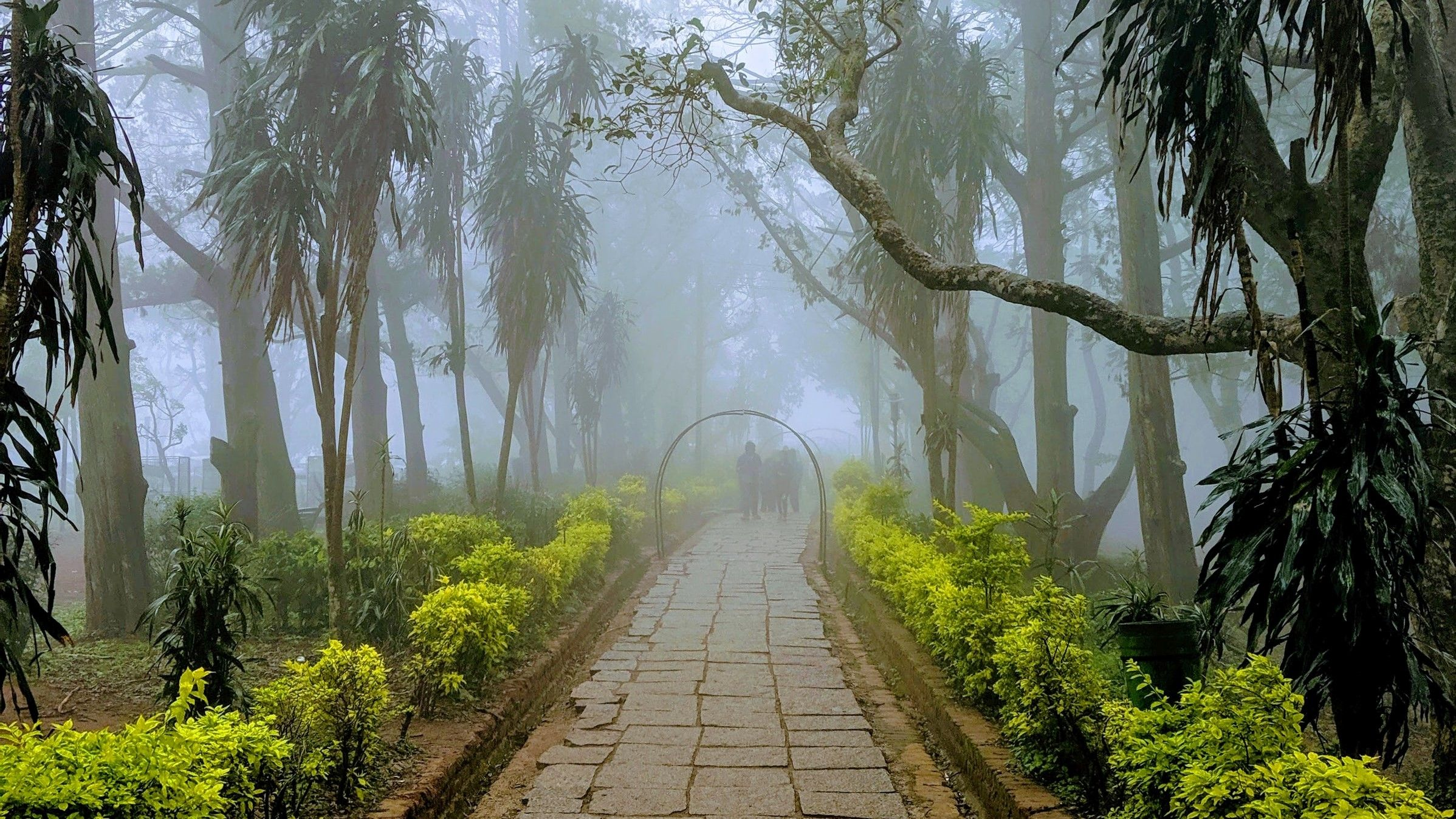 Nandi Hills Bengaluru Bangalore India