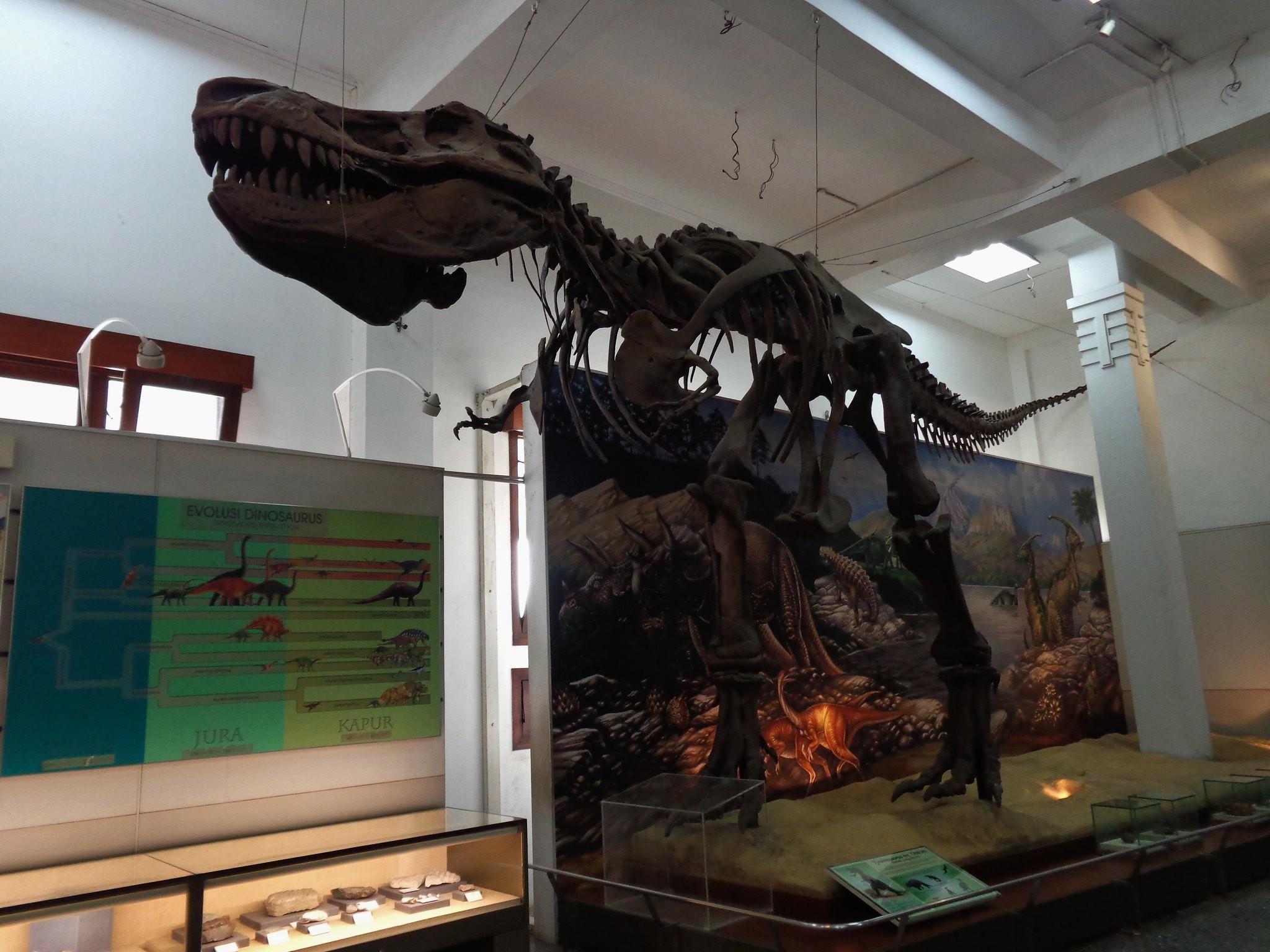 Museum Geologi Bandung Indonesia
