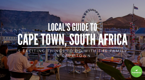 Fun For The Whole Family: Local's Guide to Cape Town, South Africa