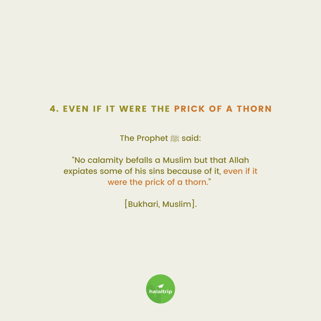 """The Prophet ﷺ said:  """"No calamity befalls a Muslim but that Allah expiates some of his sins because of it, even if it were the prick of a thorn.""""   [Bukhari, Muslim]."""