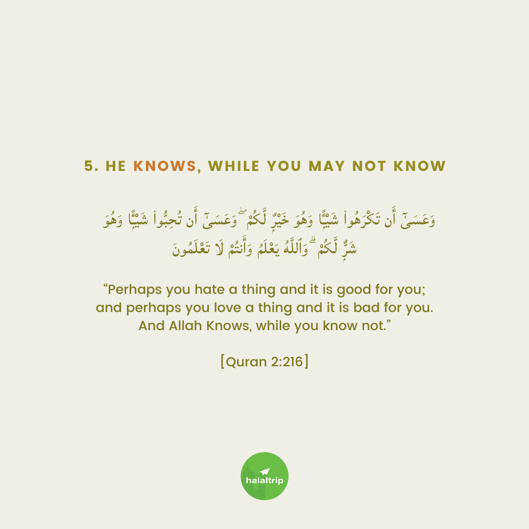 """""""Perhaps you hate a thing and it is good for you; and perhaps you love a thing and it is bad for you. And Allah Knows, while you know not.""""  [Quran 2:216]"""