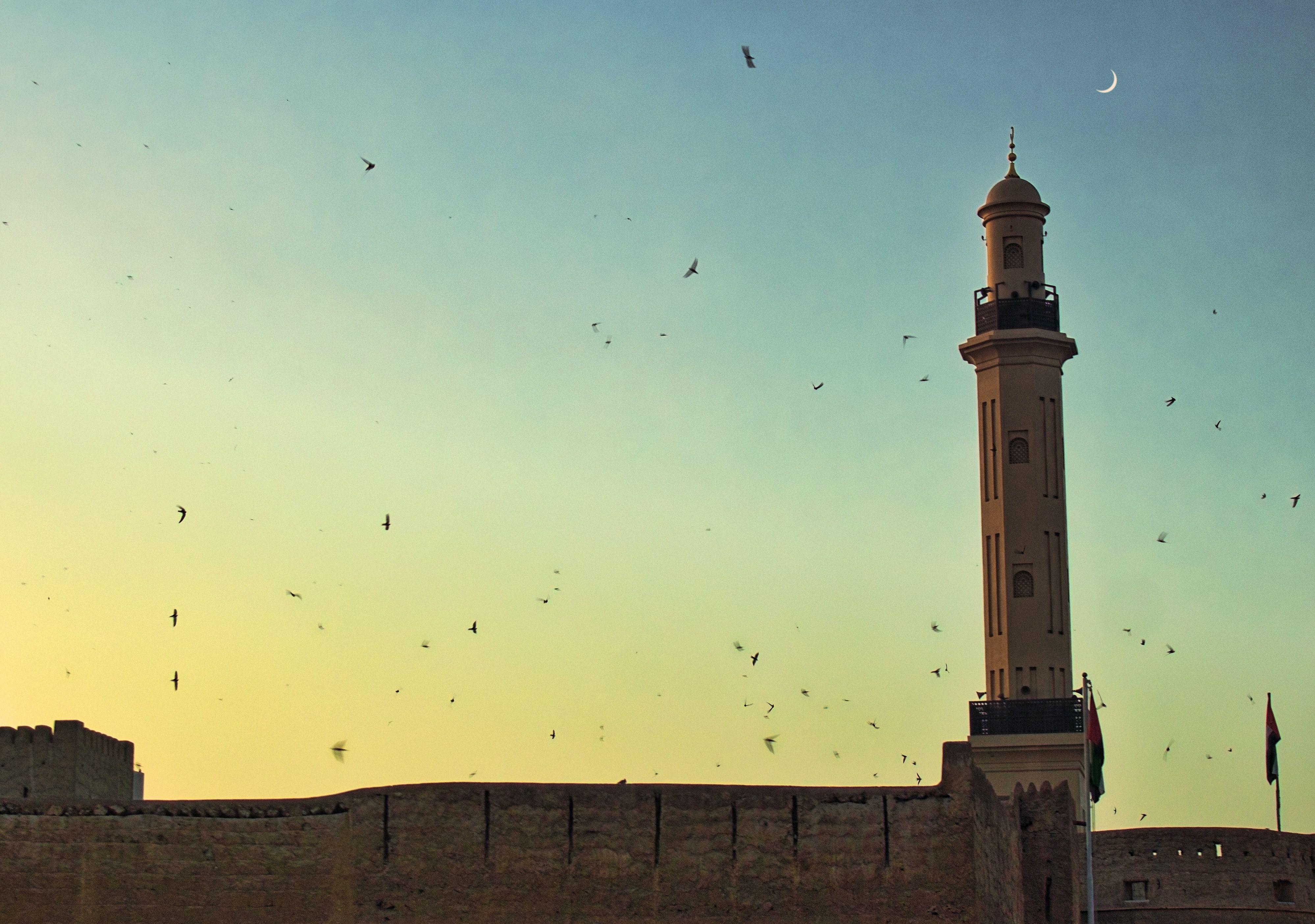 Mosque with birds flying