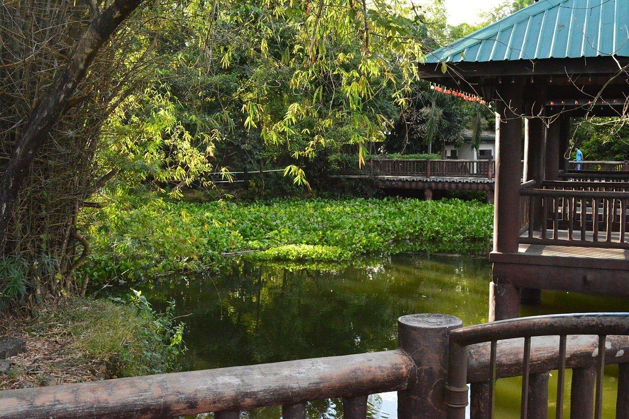 Ninoy Aquino Parks and Wildlife Quezon city