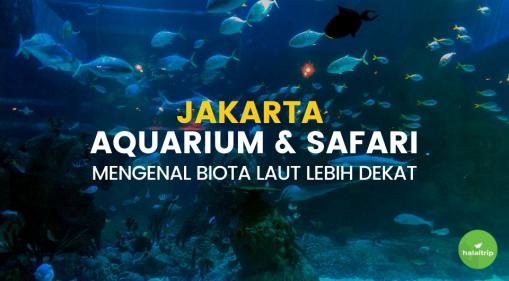 Jakarta Aquarium & Safari: Mengenal Biota Laut Lebih Dekat
