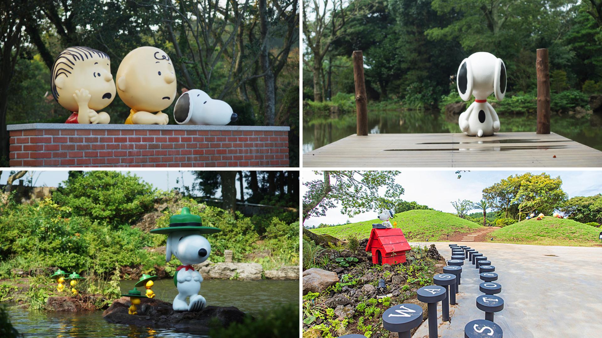 Outdoor Garden Snoopy Garden Jeju South Korea