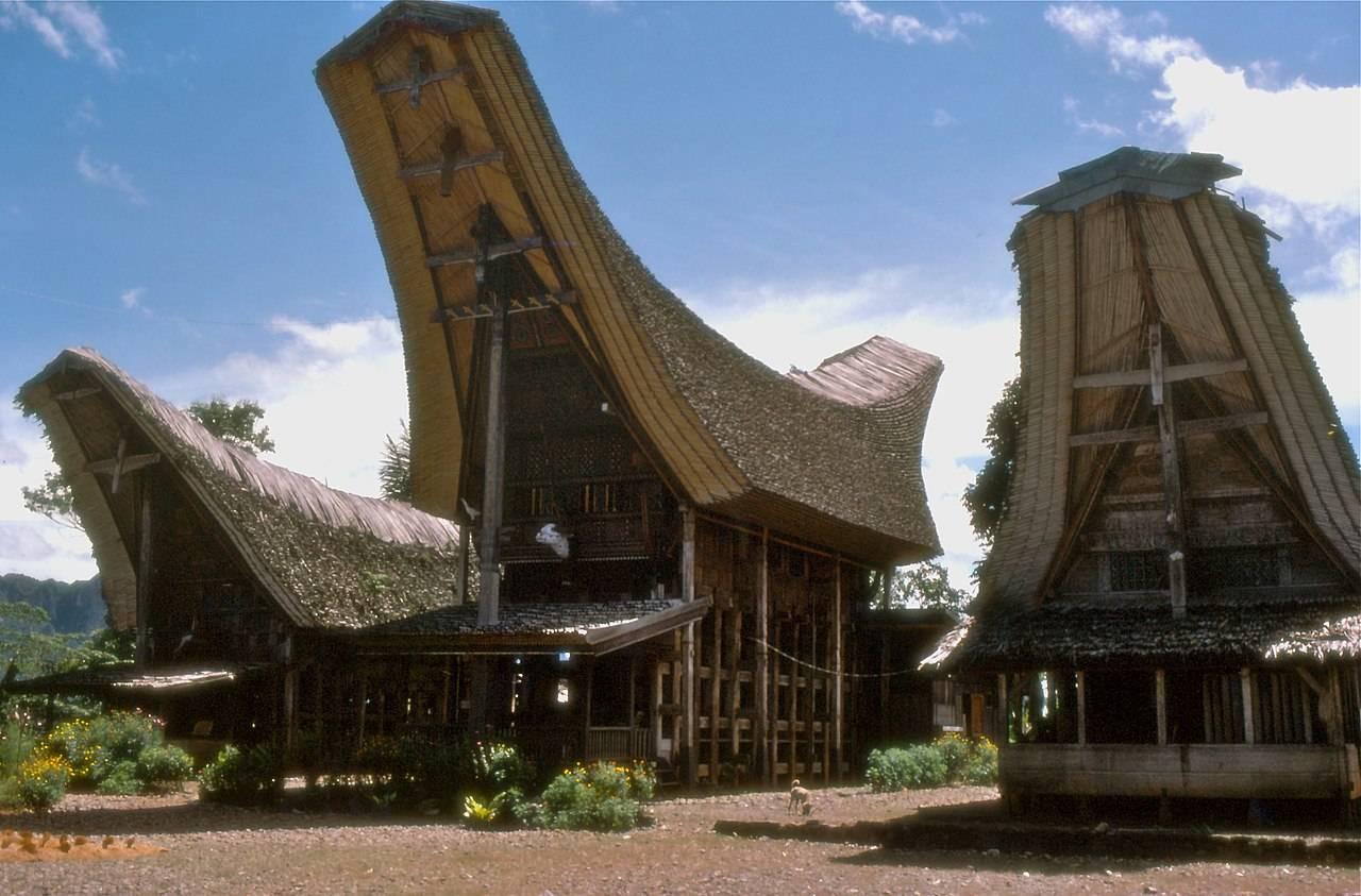 Rumah Tongkonan Rumah Adat Indonesia
