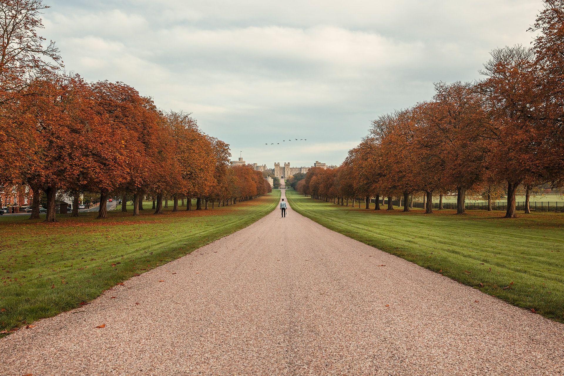 Windsor Great Park UK United Kingdom Slow Travel