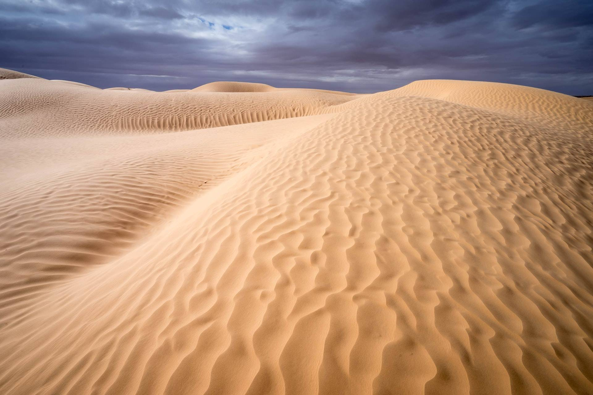 Tozeur Tunisia Sahara Desert