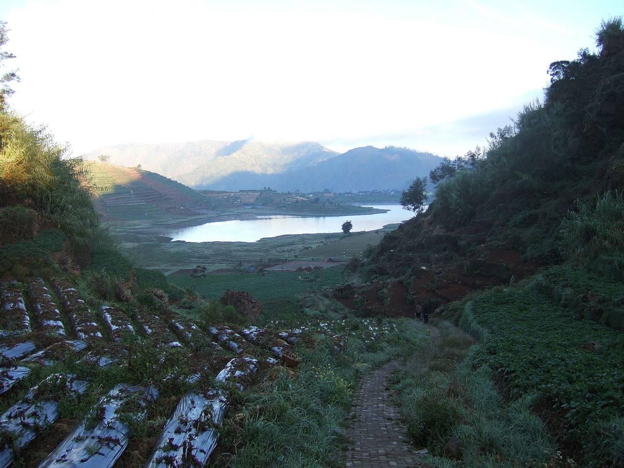 Telaga Cebong Lake Dieng Plateau Indonesia