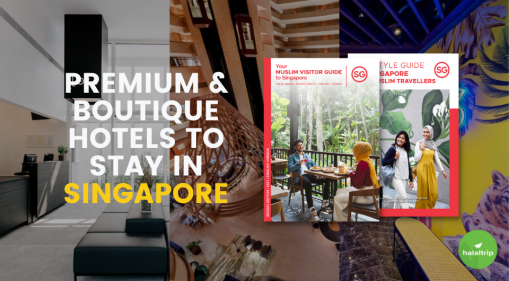 Premium & Boutique Hotels to Stay in Singapore