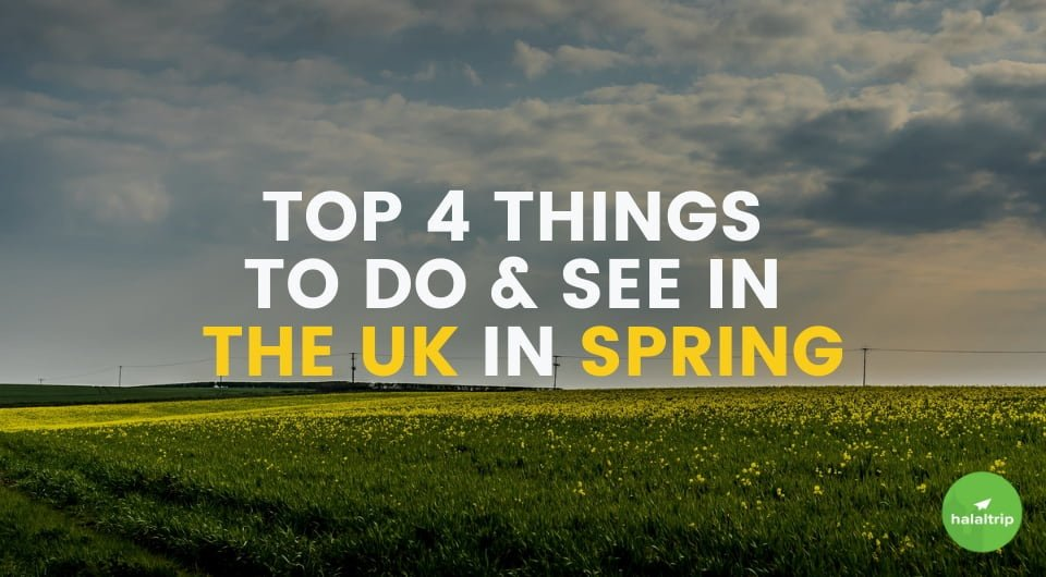 Top 4 Things to See and Do in the UK in Spring