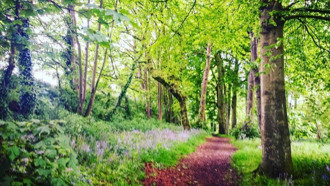 Spring UK United Kingdom