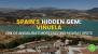 Spain's Hidden Gem: Best Things to do in Viñuela