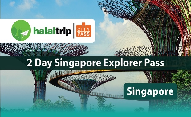 2 Day Singapore Explorer Pass