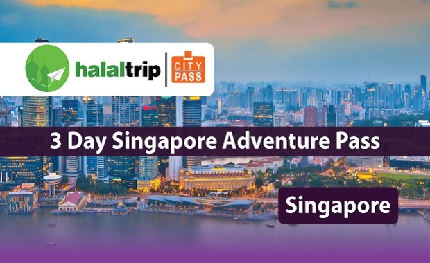 3 Day Singapore Adventure Pass
