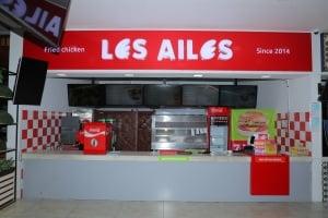 LES AILES-ANDIJON1