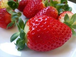 Adma Agro Strawberry Farm Shop
