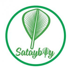 SatayBoy