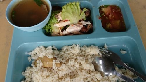 nasi ayam special