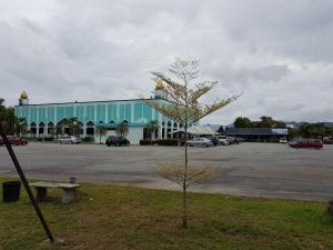 Masjid Pekan Nenas
